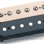Some Details On the New Slash Pickups!